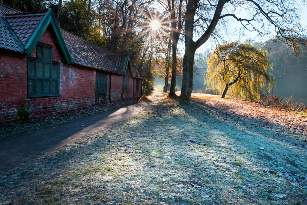 Durham riverbanks in frost