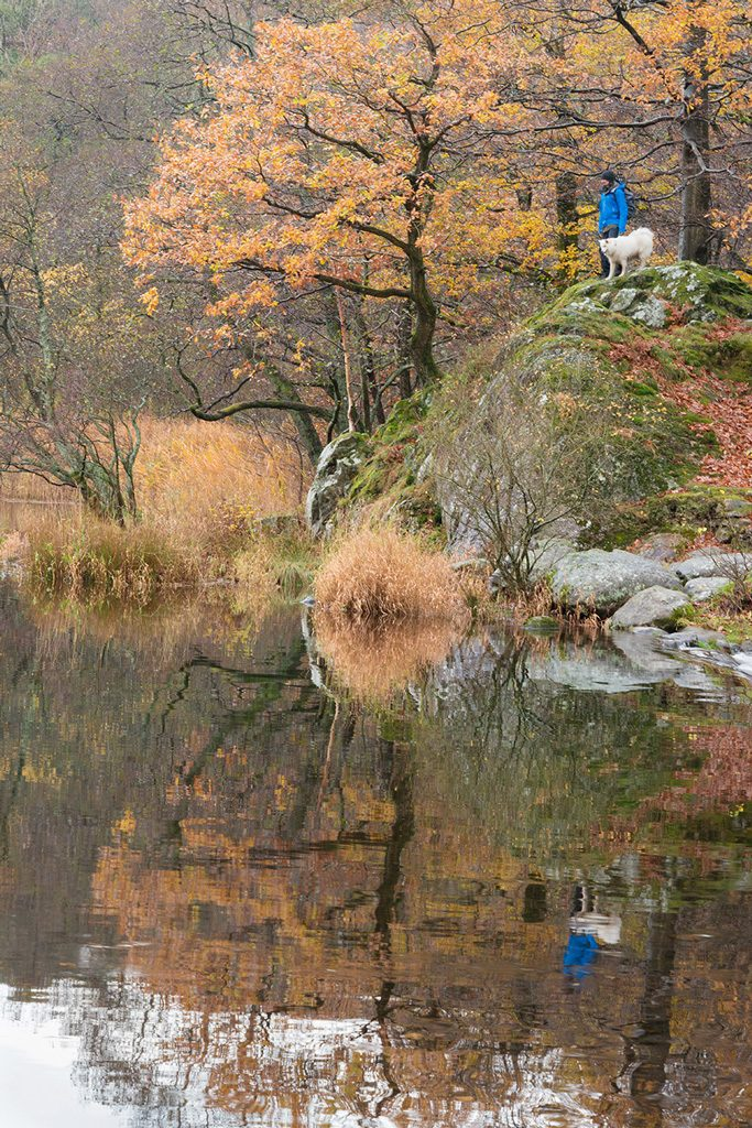 autumn on Grasmere